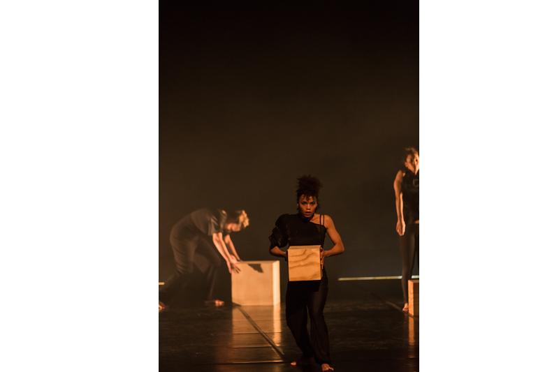 SWARM (2013)