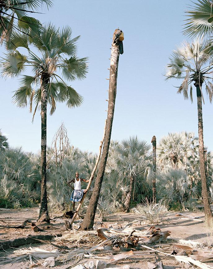 Portrait 4, Palm Wine Collectors, Kunene Region, Namibia, 2015