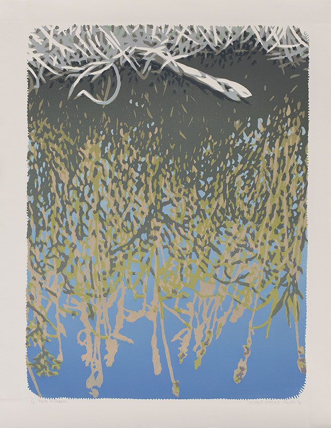 Reeds reflexion