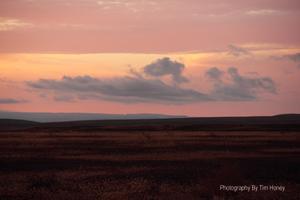 Karoo Landscape [33012]