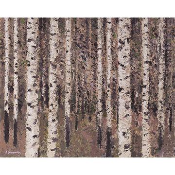 Ben Coutouvidis - Beech forest