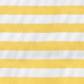 twillstripe_yellow_1002-007.jpg