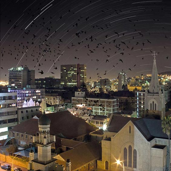 Long Street Nightmare   Cape Town   South Africa