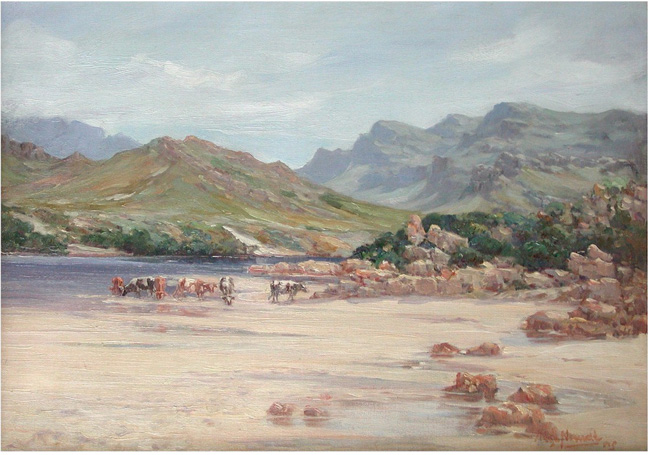 Cows, Breede River - SOLD