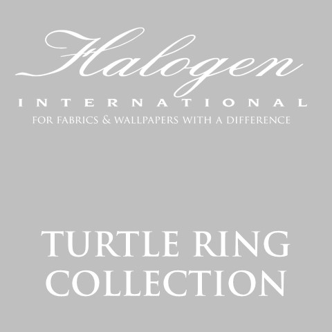 turtle_ring_cover.jpg