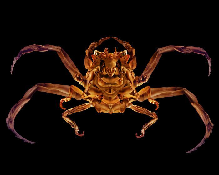 Demonface Crab  2007