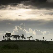 thumbnail for Makgadikgadi Pan | Botswana