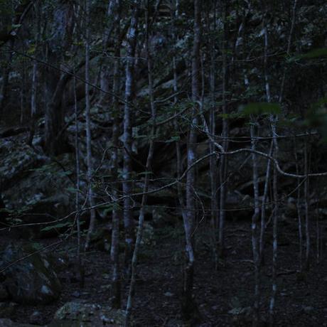 thumbnail for Wolf Kloof, Swellendam