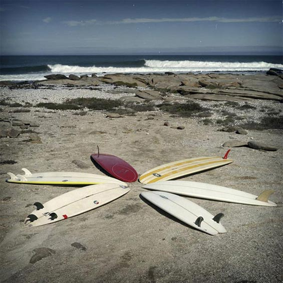 Quiver | De Beers Diamond  Reserve | West Coast | South Africa