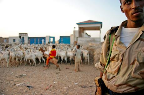 thumbnail for A soldier guards the port entrance in Bosaso, Somalia.