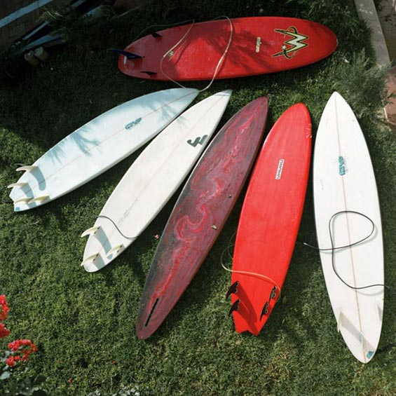 Quiver | Elands Bay | West Coast | South Africa