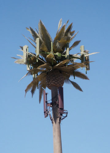 cell_tower_palm.jpg