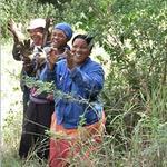 Environmental job creation project in Kwa-Ngwenya