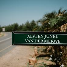 Thumbnail for Wedding/Junel+Alvi/Alvi's Drifts Wines