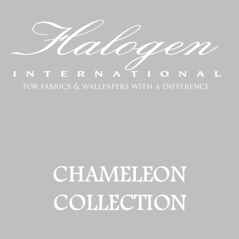 chameleon_cover.jpg