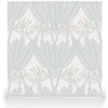 Strelitzia Tropical Beam