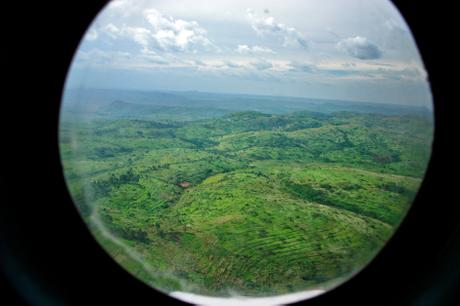 thumbnail for Above the Ituri region, DR Congo.