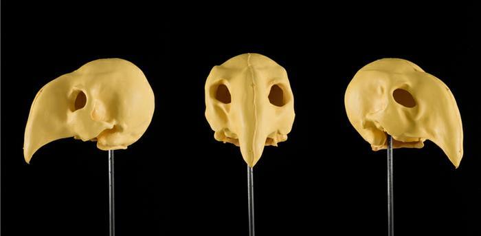 Untitled (mask) I