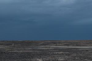Tamkwa Karoo Landscape [13002]