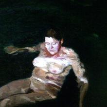 Thumbnail for Swimmer Series 2011-2012