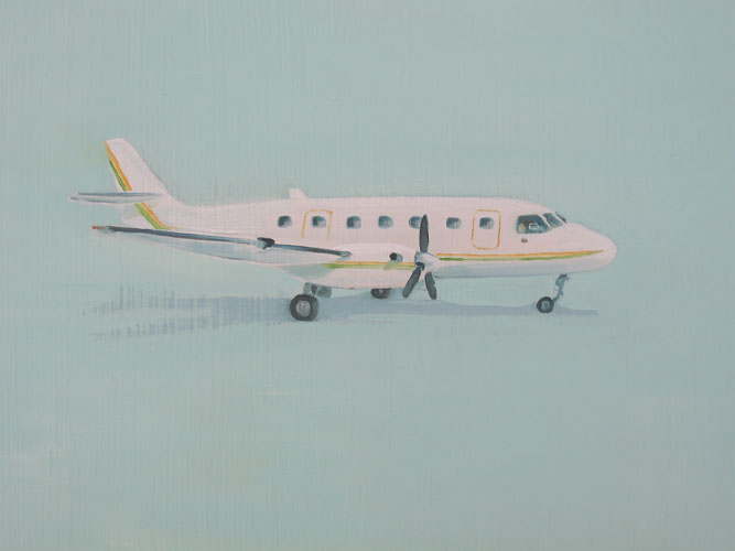 Flight 101, oil on board, 30 x 42 cm, 2007