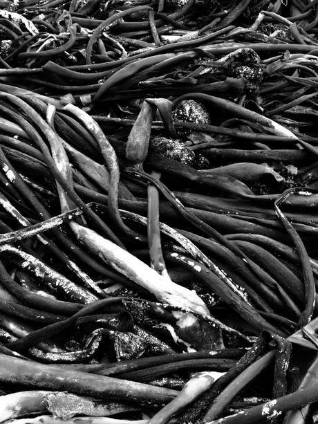 Fish Hoek Beach [57007BCC0201]