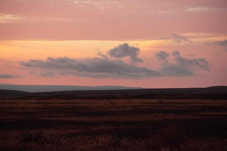 Karoo Landscape I [33012]