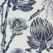 Protea - Indigo