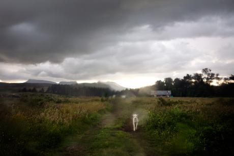 thumbnail for Hogsback, Eastern Cape