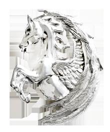 COM14 Pegasus Fortuna